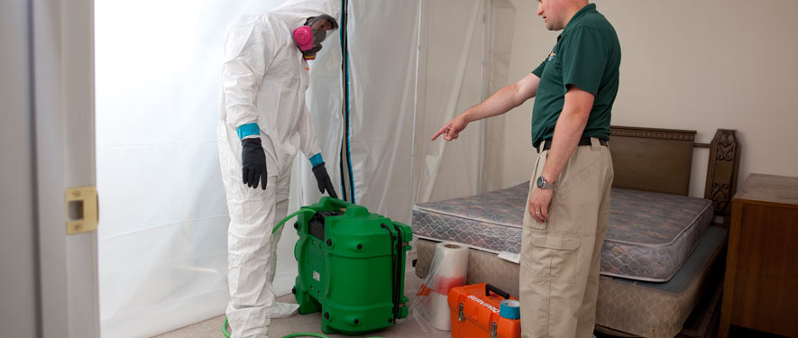 Indianapolis, IN mold removal process